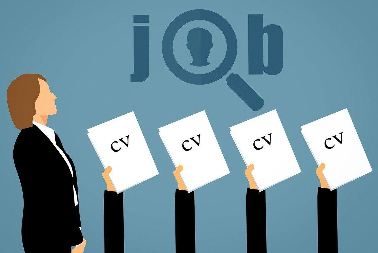 La rubrique parcours professionnel d'un CV