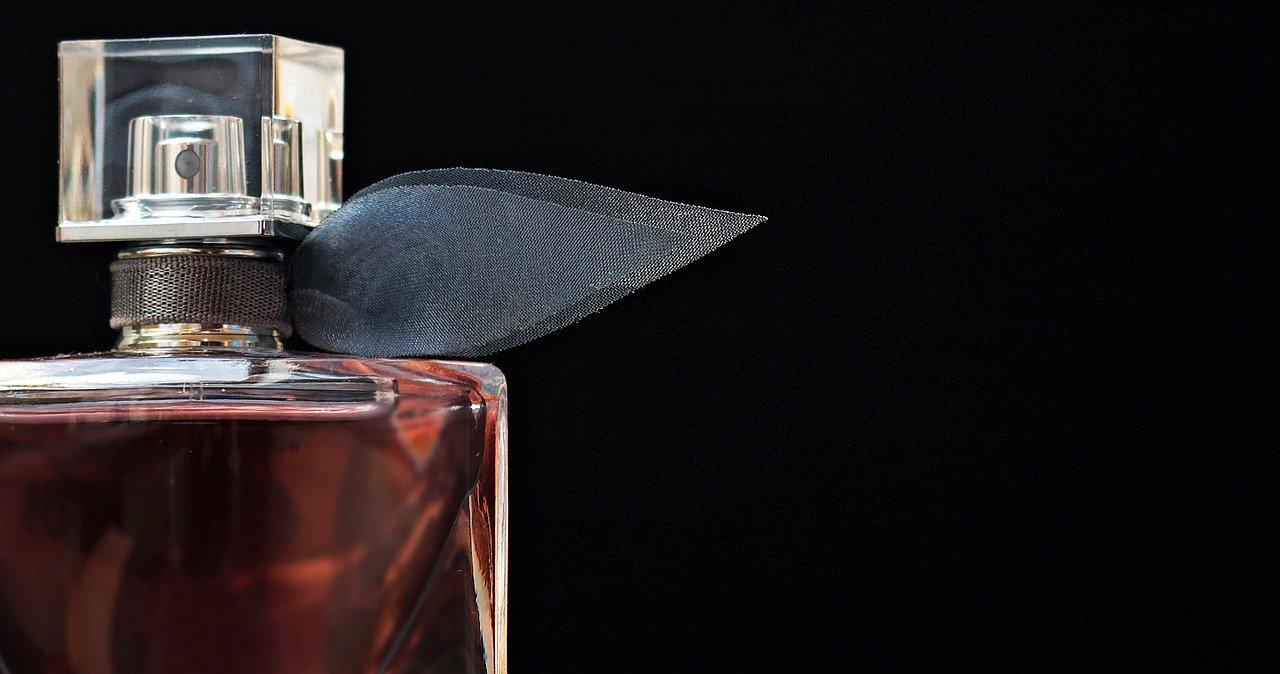 Modèles de CV conseillère de vente parfumerie
